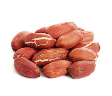 Erdnüsse / Erdnusskerne BIO, Rohkostqualität, mit der vitalstoffreichen roten Haut